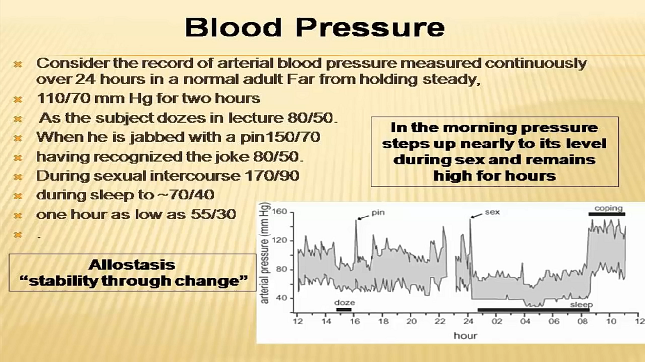 Blood Pressure Curve 24 Hrs