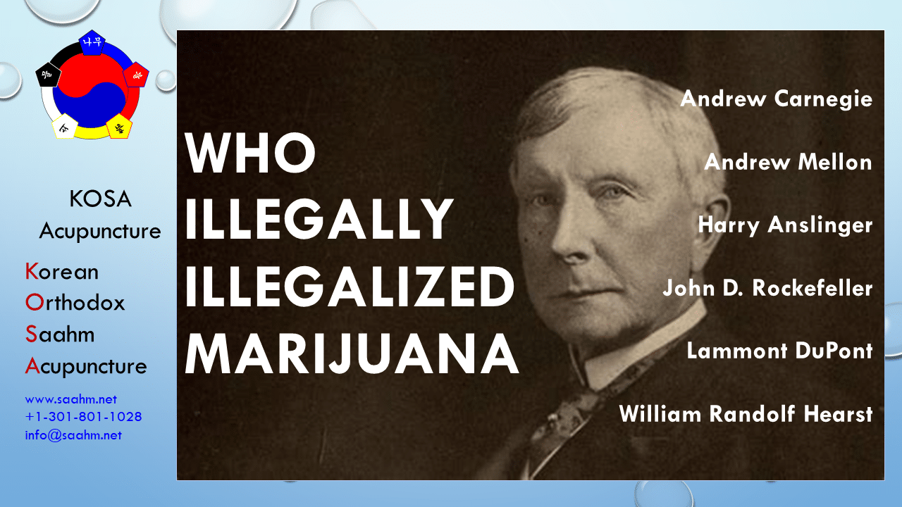 Who Illegally Illegalized Marijuana