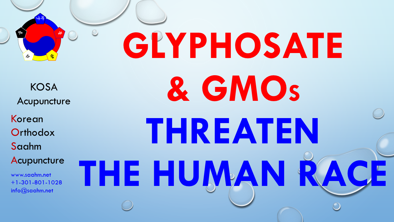 Health Info by KOSA Acupuncture 16 Glyphosate GMOs Threaten The Human Race - Health Info by KOSA Acupuncture 16 - Glyphosate & GMOs Threaten The Human Race